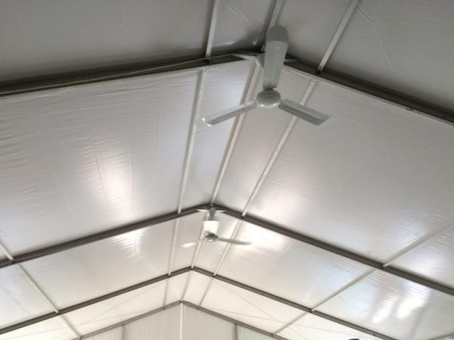 Where to find TENT CEILING FAN in Lacey